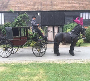 Horse and Carriage Hire in Hanley Grange